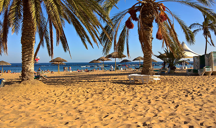 View of Las Teresitas sandy beach and palm trees